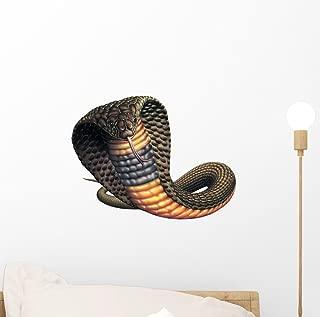 Best snake safe paint Reviews