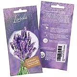 Lavendel Samen: Premium Lavendelsamen für ca. 50 duftende Lavendel Pflanzen – Lavendel Pflanze Samen, Mehrjährig und...