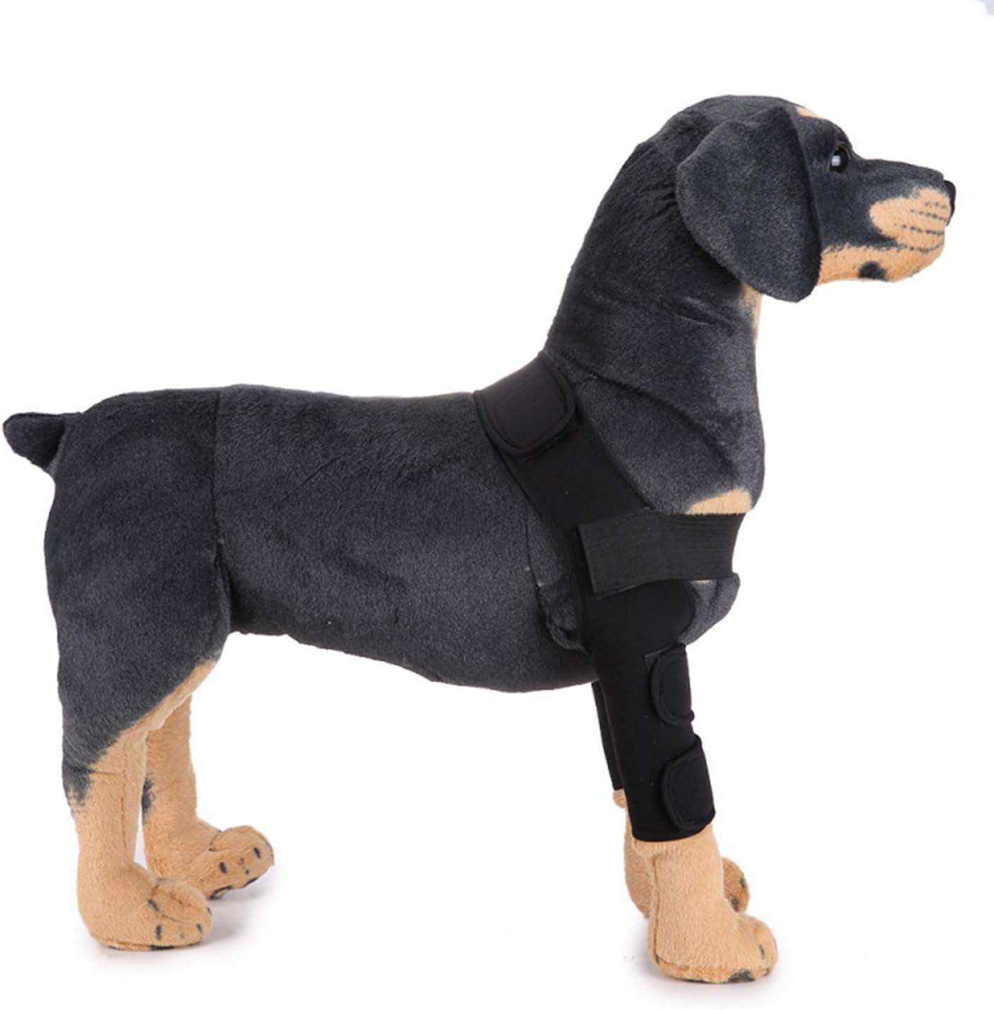 PETCUTE Perro canino Posterior Pierna Hock Extra Apoyo Rodillera del Perro Rodillera Canina Protege heridas Que curan compresión Soporte (1 par)