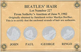 The Beatles Hair Display Limited Edition - John Lennon, Paul McCartney, George Harrison, Ringo Starr
