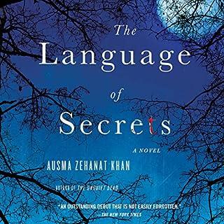 Language of Secrets audiobook cover art