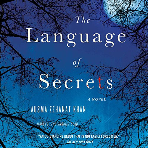 Language of Secrets audiobook cover art