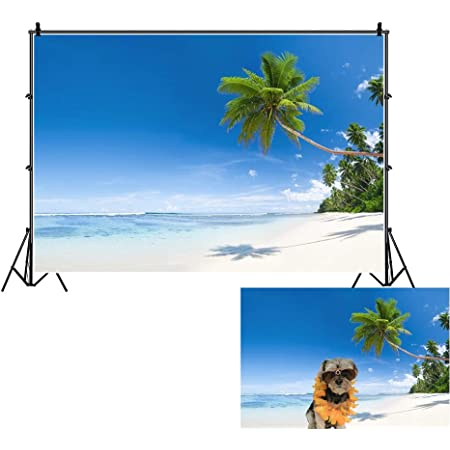 Underwater Backdrop Image Decor Hawaiian,TropicalFrangipaniandHibiscusBlossomsExoticButterflieswithPalmLeaves,Multicolor PVC Sticker Pictures Poster Background Decoration