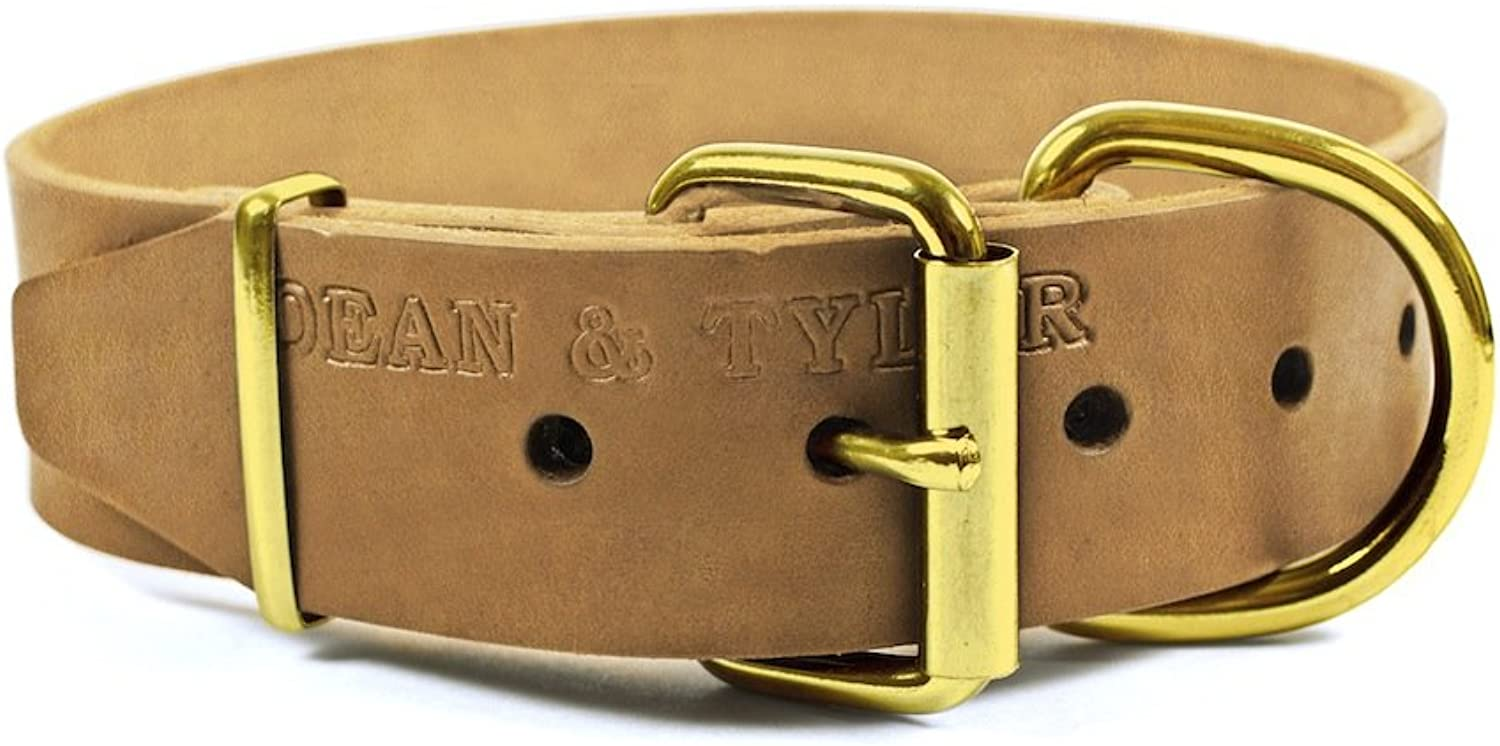 Dean and Tyler  B&B  Dog Collar With Solid Brass Hardware  Tan  Size 25cm by 3cm Width  Fits Neck Size 20cmes to 30cmes.