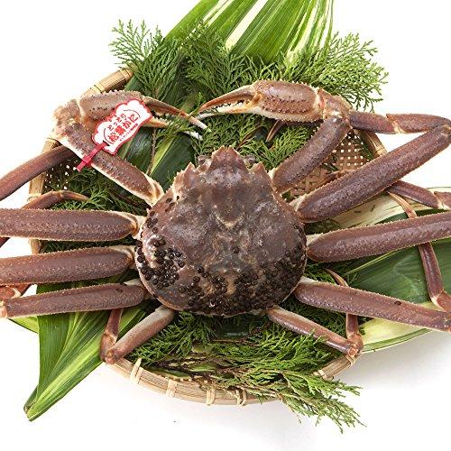 日本海市場 贈答用タグ付き 特上松葉ガニ(ズワイガニ)姿 大サイズ1枚(活800g前後)「本物」の松葉ガニを産地直送でお届けします お歳暮 ギフト対応