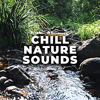 Australian Creek Sounds