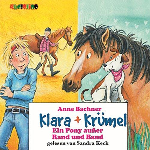 Ein Pony außer Rand und Band Titelbild