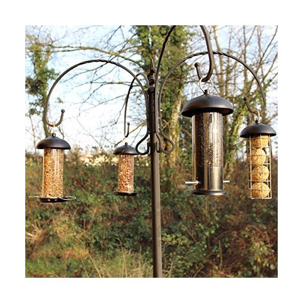 Easipet Hanging Wild Bird Feeder set of 4 Seed Nut Fat Ball Ngyer Garden Feeding Station