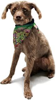 "Kess InHouse Robin Dickinson""Live in the Sunshine"" Green Red Pet Bandana and Scarf, 28 by 20 by 20-Inch"