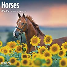 2020 Horses Wall Calendar with 324 Stickers Included! 16 Month 12 x 12 Wall Calendar by Bright Day Calendars