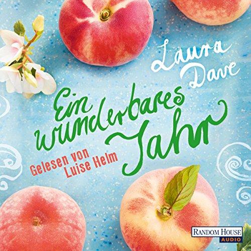 Ein wunderbares Jahr audiobook cover art