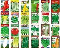 の庭庭鉢植えの野菜の種有機非GMOオリジナル春と秋野菜の庭の種:200個の種子コリアンダーコリアンダーコリアンダー