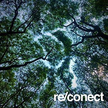 re/conect