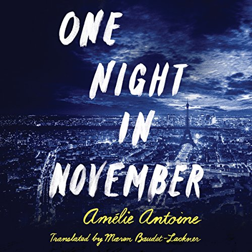 One Night in November audiobook cover art