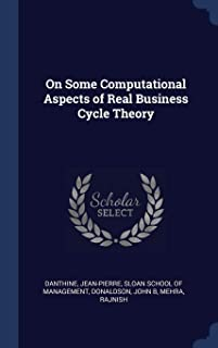 On Some Computational Aspects of Real Business Cycle Theory