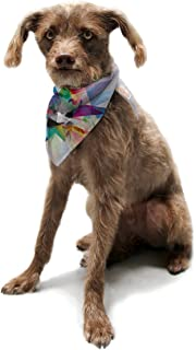 "Kess InHouse Mareike Boehmer""Colorful"" Rainbow Abstract Pet Bandana and Scarf, 28 by 20 by 20-Inch"
