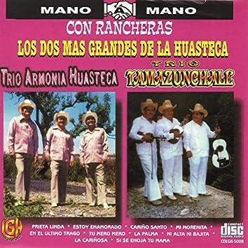 Los Dos Mas Grandes De La Huasteca