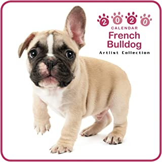 The Dog Mini Wall Calendar 2020 French Bulldog