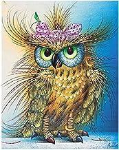 5D Diamond Painting by Number Kits,DIY Full Drill Owl Crystal Rhinestone Diamond Embroidery Paintings Cross-Stitch Arts Cr...