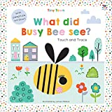 Tiny Town What Did Busy Bee See? (Tiny Town Touch and Trace)