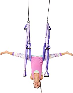 YOGABODY Yoga Trapeze [official] - Yoga Swing/Sling/Inversion Tool, Purple with Free DVD