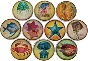 Set of 10 Colorful Sea Life Wood Cabinet Knobs