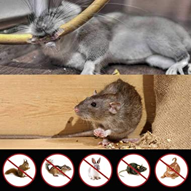 Glaobule Electronic Pest Rodent Repellent Ultrasonic Battery Operated Mouse Squirrel Repellent Ultrasonic Mice Rat Rodents Re