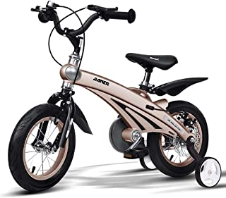 HDGZ Kids' Bikes, Children's Bicycle Child Bicycle 3 Year Old Boy Bicycle 4-8 Year Old Child Car 14 Inch Bicycle (Color : ...