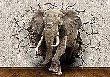 Papel tapiz fotográfico elefante 3D avance de la pared 6 partes papel tapiz fotográfico, mural, papel tapiz temático, papel tapiz no tejido animal, pared, descanso-200x100 cm (78,74 x39,37 pulgadas)