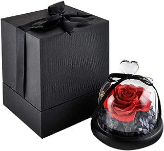 Best eternal rose price Reviews
