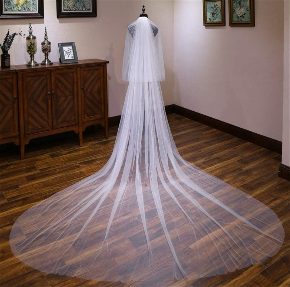 L-ELEGANT Wedding Veil, Europe and America Simple Wedding Accessories Lace Mesh Two Layers Trailing Bridal Veil -400300cm
