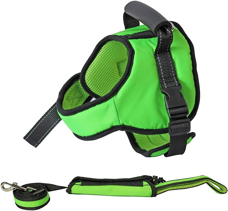 Dog Leash Harness Set with Collar & Heavy Duty Denim Dog Leash Collar for Medium Large Dog,4 colors (color   Green B, Size   XXL)