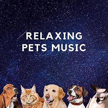 Relaxing Pets Music