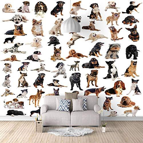 Fototapeten Tierkategorien für Katzen und Hunde 3D tapete Vlies Tapeten Design Wand Dekoration Wohnzimmer Schlafzimmer Büro Flur Innendekorationen-350X250cm