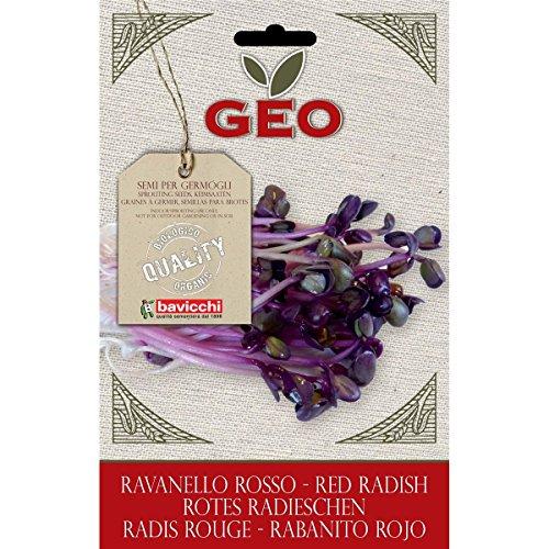 Geo Graine à Germer Radis Rouge Brun 12,7 x 0,7 x 20 cm