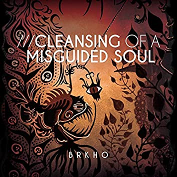 Cleansing of a misguided soul