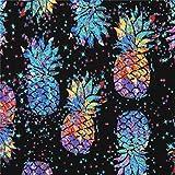 Schwarz Stoff mit bunten Ananas von Timeless Treasures