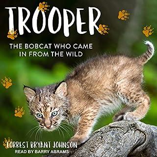 Trooper audiobook cover art