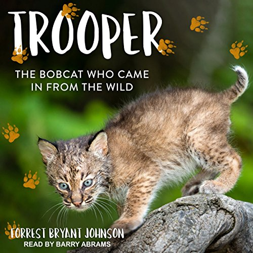 Trooper audiobook cover art