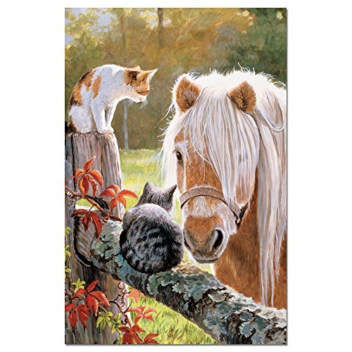 """Tree-Free Greetings EcoNotes Stationary- Blank Note Cards with Envelopes, 4"""" x 6"""", Just Visiting, Horse Themed, Boxed Set of 12 (FS66526)"""