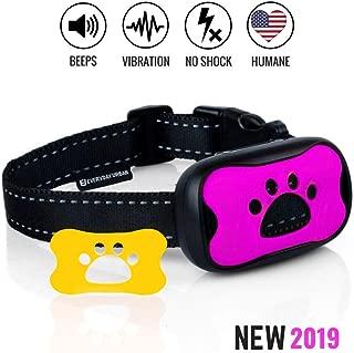Best urban dog collars Reviews