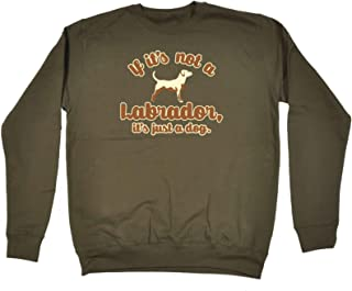 123t Funny Novelty Funny Sweatshirt - If Its Not A Labrador Its Just A Dog - Sweater Jumper