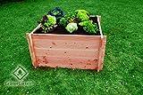 GrünerGarten Hochbeet GRÖN - Premiumqualität, Bio Douglasie Blockbohlen, sehr robust, sehr einfacher Aufbau ohne Werkzeug, völlig schadstofffrei (M-110)