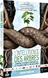 L'intelligence des Arbres Coffret 2 DVD