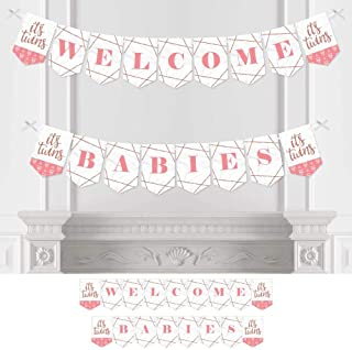 Oh Babies Welcome Sign Boy and Girl Twins Baby Shower Welcome Sign Pink and Blue Welcome Baby Shower Sign BS074