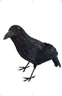Smiffys Crow Size: One Size