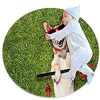 ソフトラウンドエリアラグ 80x80cm/31.5x31.5IN 滑り止めフロアサークルマット吸収性メモリースポンジスタンディングマット,公園の芝生の上に横たわっている犬