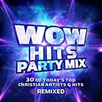 Wow Hits Party Mix / Various