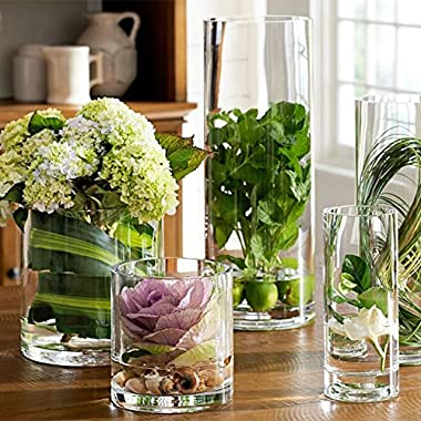 Noah Decoration Hand-Blown and Handmade Cylinder Clear Glass Flower and Filler Vase for Home and Wedding Indoor and Outdoor Decoration 5.9