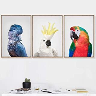 DKQL Parrot Cockatoo Wall Art Canvas Painting Nordic Posters and Prints Animal Nursery Wall Pictures for Living Room Decor-40x60cmx3 pcs no Frame